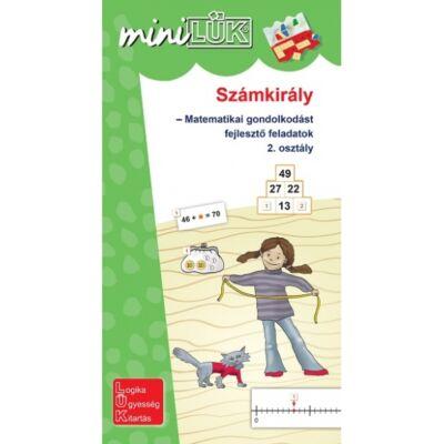 Mini LÜK füzet - Számkirály 2. osztály
